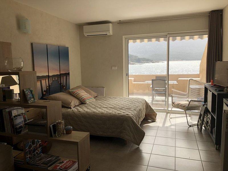 Studio vue imprenable, holiday rental in Casaglione