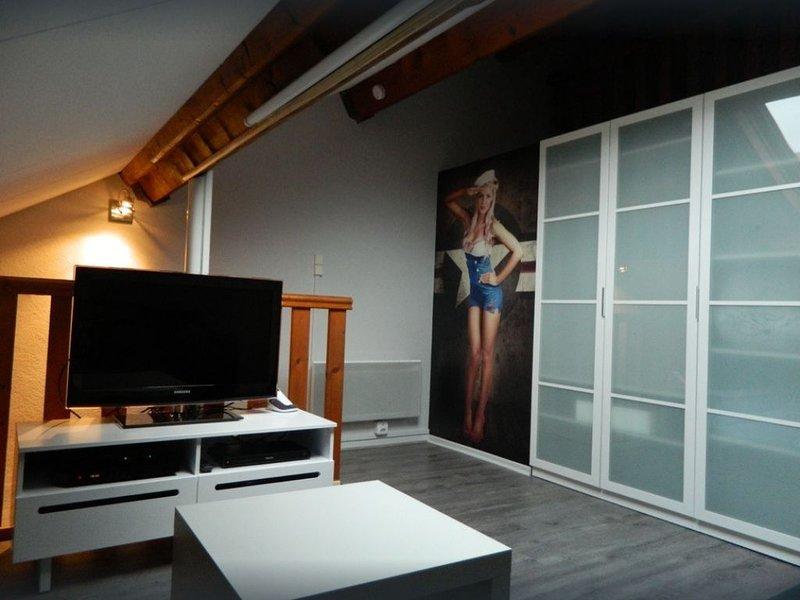 Triplex Type Loft, entièrement rénové, ascenseur, 6 pers, 2 SDB, Idéal famille, vacation rental in Ascou