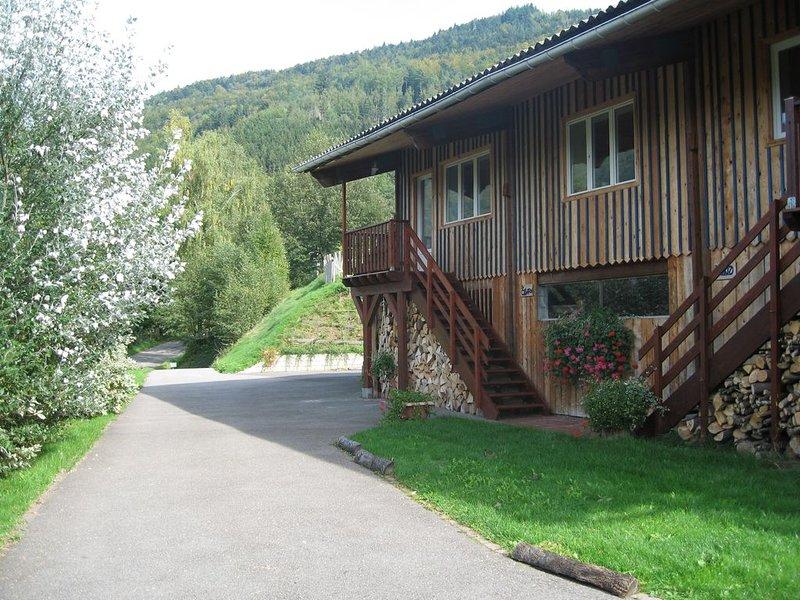 LE CELADON, gite spacieux, lumineux et confortable classé 3 étoiles, holiday rental in Husseren-Wesserling