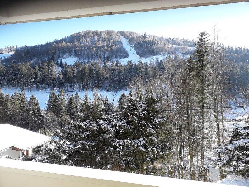 T2 au pied des pistes, holiday rental in Mittlach