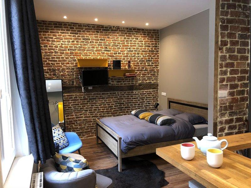 Le Studio de Rousseau ... Vieux Lille, location de vacances à Lille