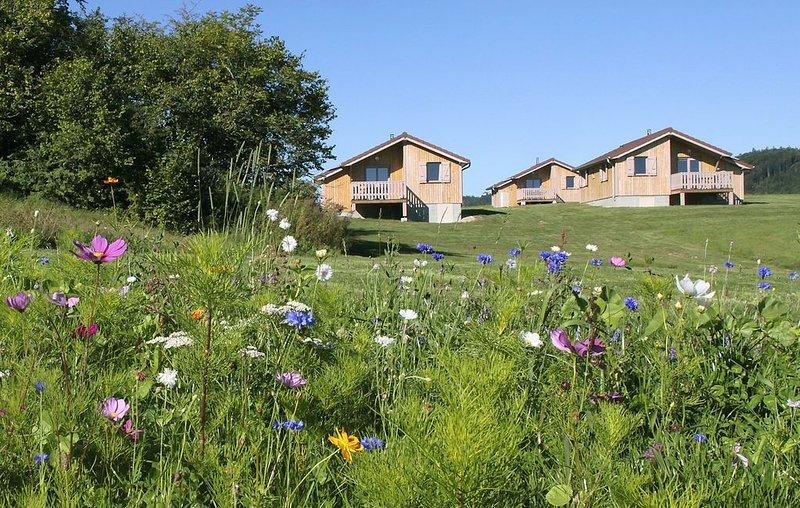 Chalet de Trémontagne avec vue sur les Monts Jura avec WIFI, holiday rental in Saint-Pierre