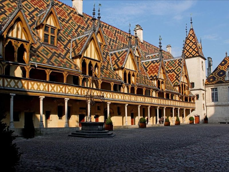 Appartement au centre ville de Beaune, holiday rental in Bligny-les-Beaune
