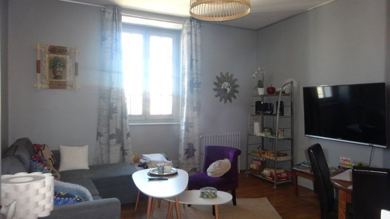 Le Compostelle, T3 chic, charme, confort, cocooning 80 m², vacation rental in Rilhac-Rancon