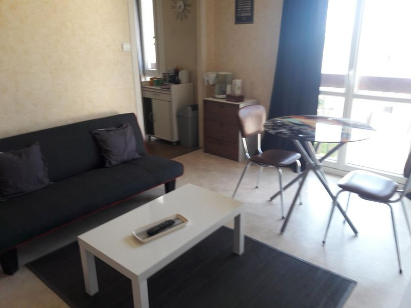 T1 a coté du Centre  , ideal  pour 1 a 3 personne avec parking, vacation rental in Rilhac-Rancon