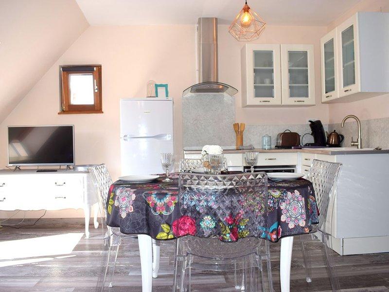 NOUVEAU Au cœur du centre ville d'Obernai en Alsace, duplex charmant et cosy, location de vacances à Bernardswiller