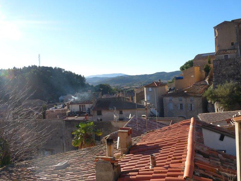 Charmante maison de village et de caractère, pour des vacances nature et détente, vacation rental in Opoul-Perillos