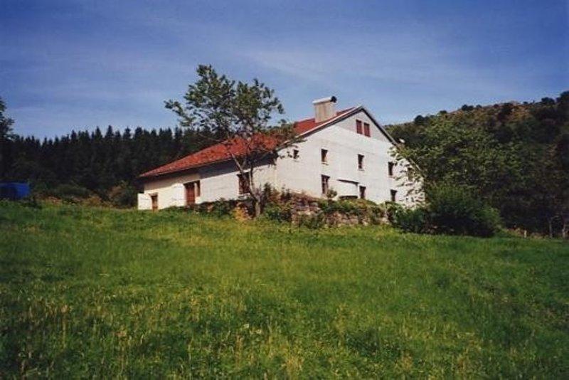 La Bresse(88): Appartement dans ferme renovée au coeur montagne (900 m altitude), location de vacances à Rochesson