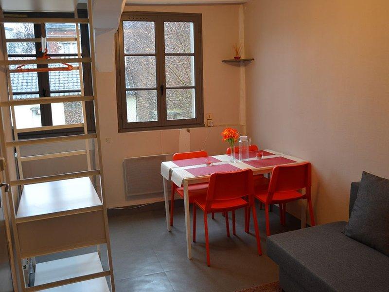 Studio cosy, centre ville, 5min à pied gare SNCF, holiday rental in Mont-Saint-Aignan