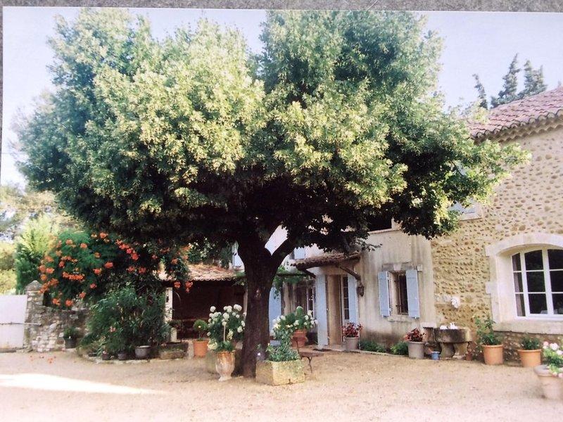 Le mas du Tilleul --, holiday rental in Saint-Laurent-des-Arbre