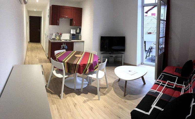 Charmant appartement T2 de 27 m2 refait à neuf avec terrasse à Bayonne, vacation rental in Bayonne