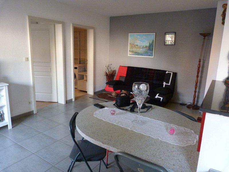 Location de vacances à Ensisheim (Haut-Rhin68), holiday rental in Pfastatt