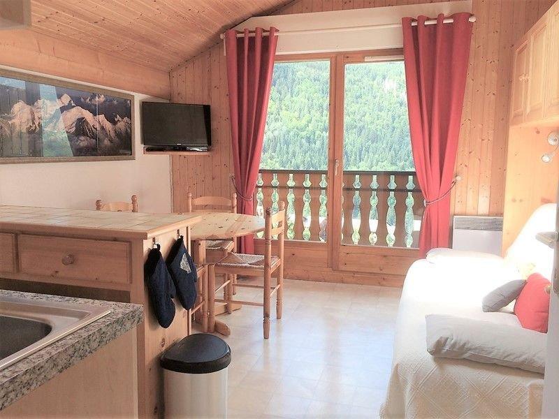 TER-OURS-59 Deux pièces cabine à proximité des pistes, casa vacanza a Saint Jean Aulps