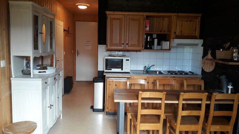 Appartement dans le domaine skiable des Sybelles, à Saint Jean d ' Arves, holiday rental in Saint Jean d'Arves