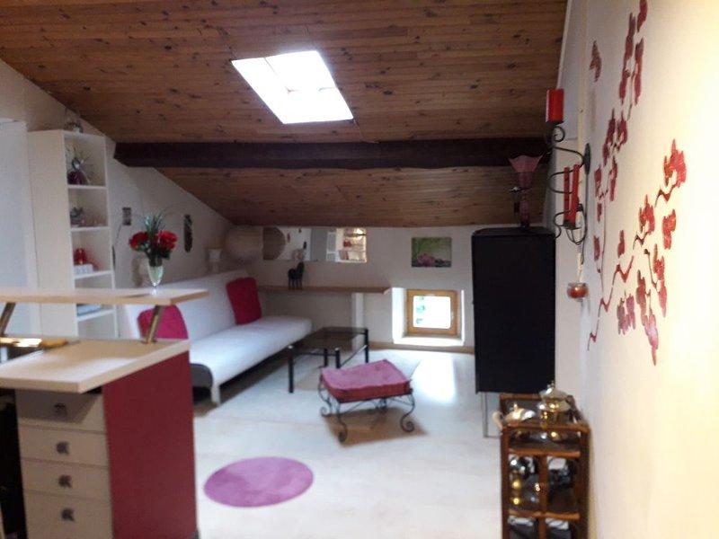 T 3 mansardé dans maison de caractère, location de vacances à Madière