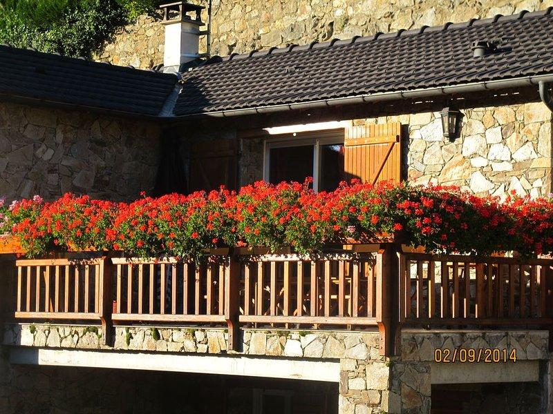 MAISON STYLE CHALET MONTAGNARD, vacation rental in Ignaux