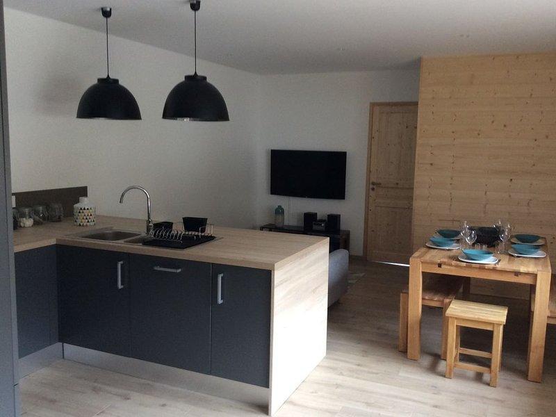 Appartement 60 m2 avec terrasse 6 personnes pied des pistes, holiday rental in Lascelle