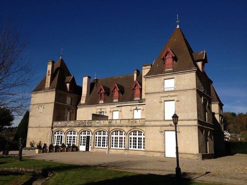 château 15mn de vichy 240m2 avec piscine de 4/ 6 pers F6 suite familiale au 1er, holiday rental in Le Mayet-de-Montagne