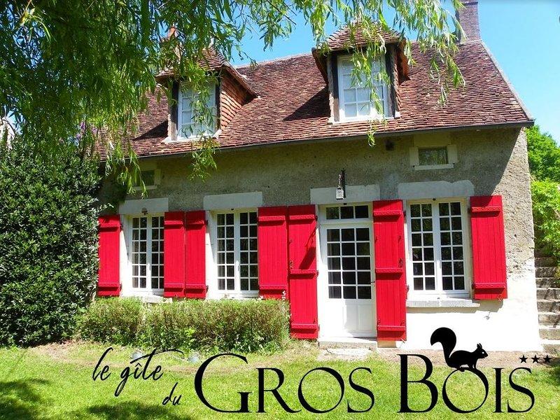 Le Gîte du Gros Bois*** 4-6 personne, proche Guédelon, vacation rental in Sainte-Colombe-sur-Loing