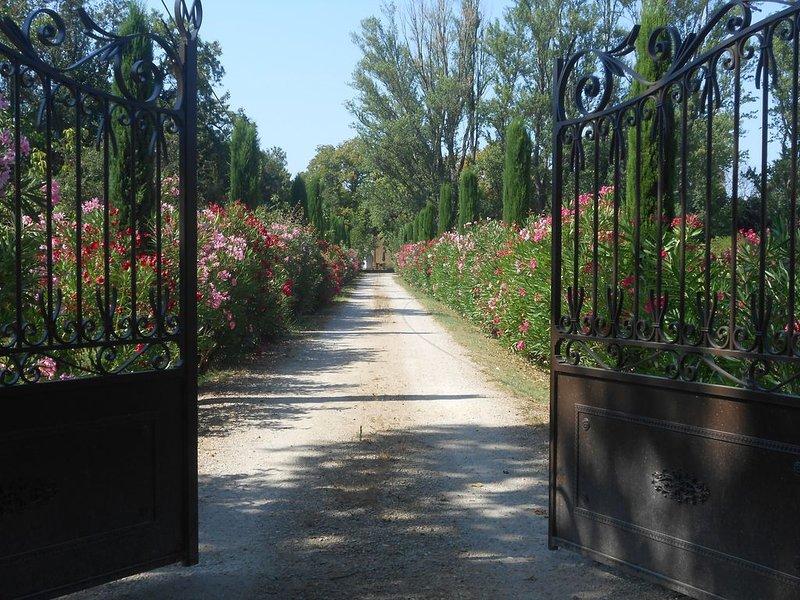 En Terre de Provence, le Mas Valérian, vacation rental in Molleges