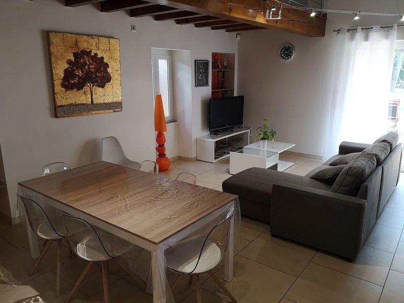 Charmante maison tout confort au cœur du vignoble Gaillacois, holiday rental in Tarn