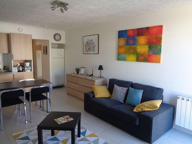 Charmant studio moderne, fonctionnel et calme - WIFI – semesterbostad i Arles-sur-Tech