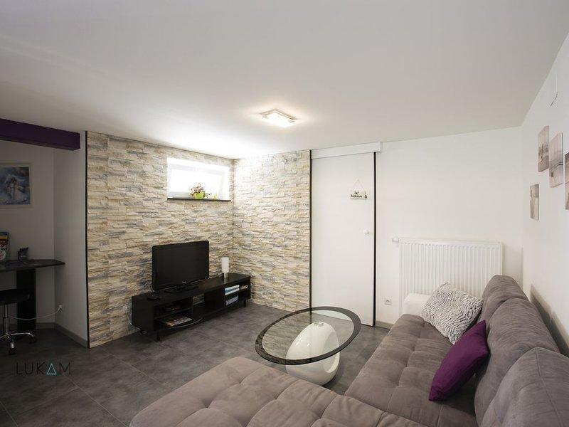 Bel appartement sur la route des vins pour 4 personnes, holiday rental in Chatenois