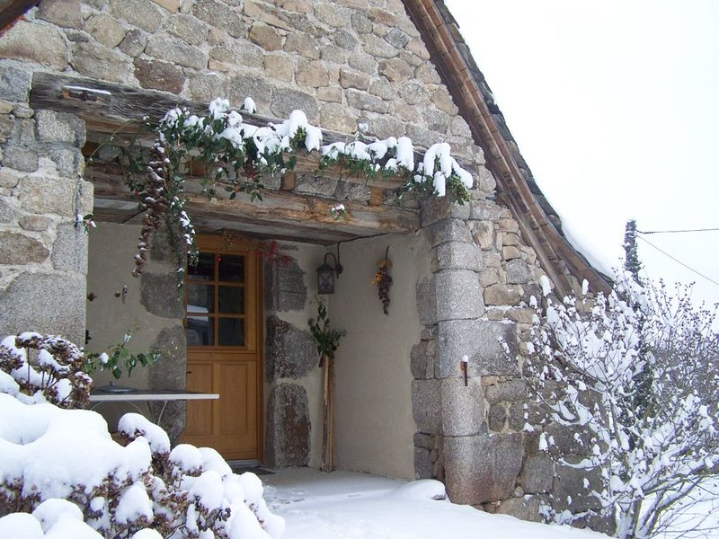 Amazing house with terrace & Wifi, holiday rental in Montpeyroux