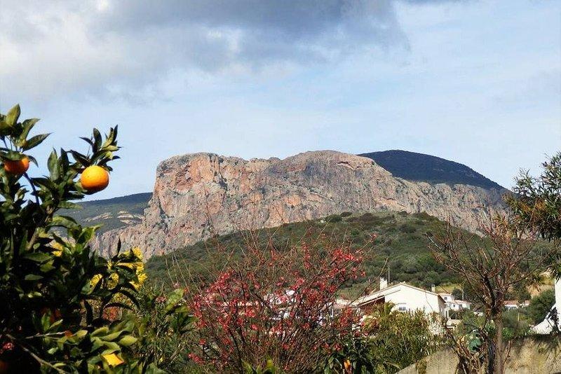 T3 entierement rénové ( rez de villa) à 10 min d'Ajaccio, location de vacances à Valle-di-Mezzana