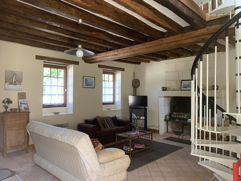 LA VIELLE VIGNE maison (70 m2)  avec jardin ombragé, au coeur du village, vacation rental in Noyant