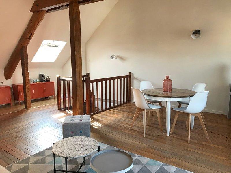 Beau duplex centre ville d'Auxerre, holiday rental in Chablis