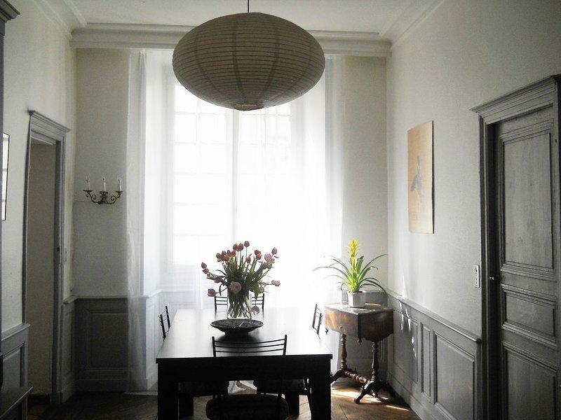 Grand appartement ancien au coeur de la vieille ville, holiday rental in Polignac