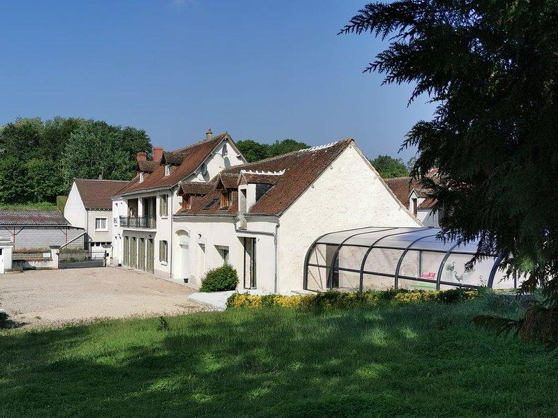 Propriété avec piscine à 15 kms de Beauval et des châteaux, vacation rental in Chatillon-sur-Cher