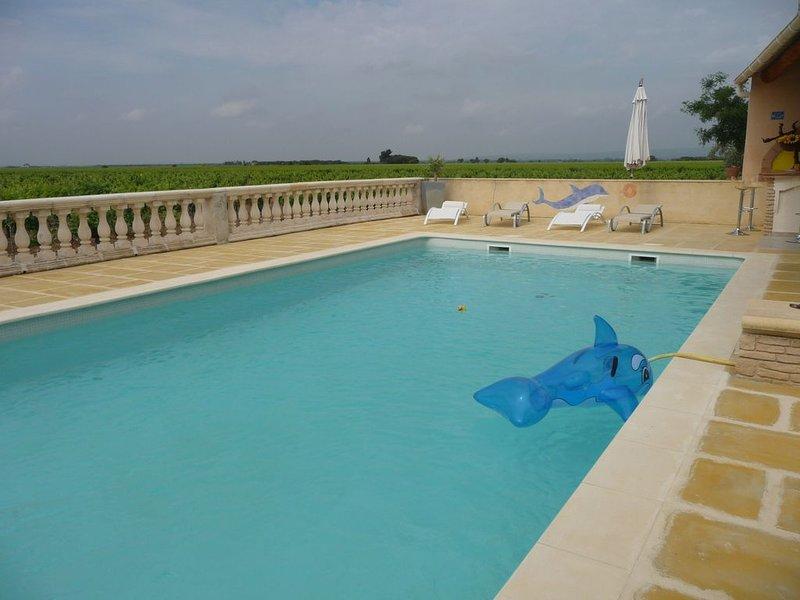 Joli mas traditionnel provençal de caractére avec piscine à Rasteau, location de vacances à Saint-Roman-de-Malegarde