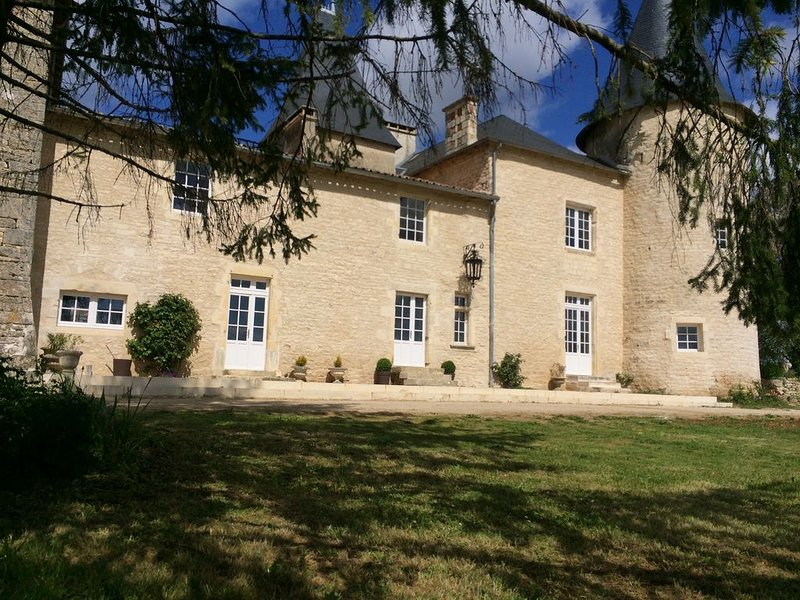 Château de Monteneau, holiday rental in Savigne