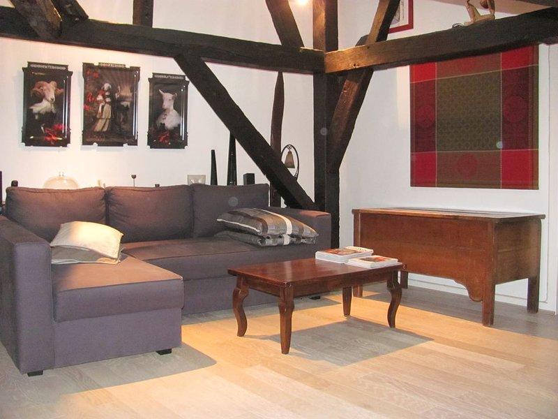Appartement hypercentre - Vieux Tours / centre historique - 2 chambres, location de vacances à Saint-Pierre-des-Corps