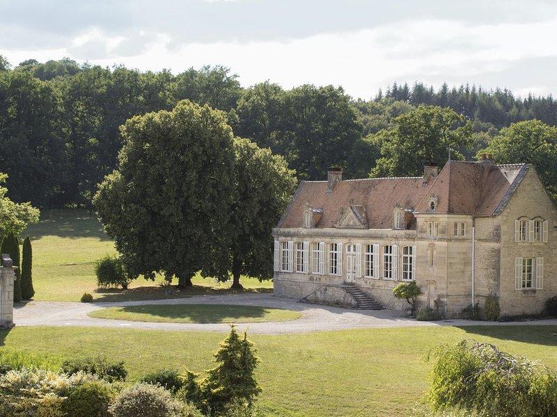 Majestueuse Commanderie historique dans parc 10 ha, tennis, proche lac de Der, holiday rental in Louvemont