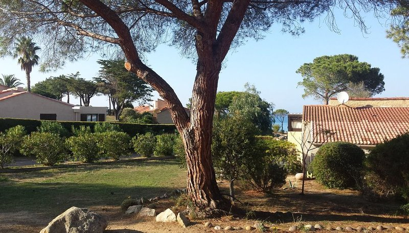 Maison classée 3* à 100m de la mer, aluguéis de temporada em Lumio