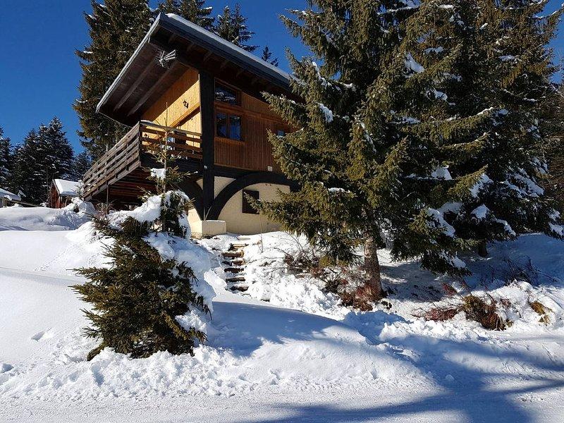 Au pied des pistes de Doucy: Grand chalet avec terrasse orienté plein Sud, holiday rental in Doucy