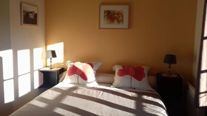 La Closerie de Parnay, holiday rental in Allonnes