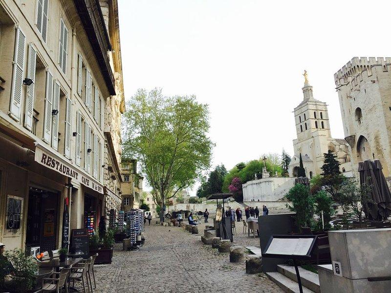 Place du Palais des Papes Magnifique Appartement de 250 m2 avec entrée Privative, holiday rental in Avignon