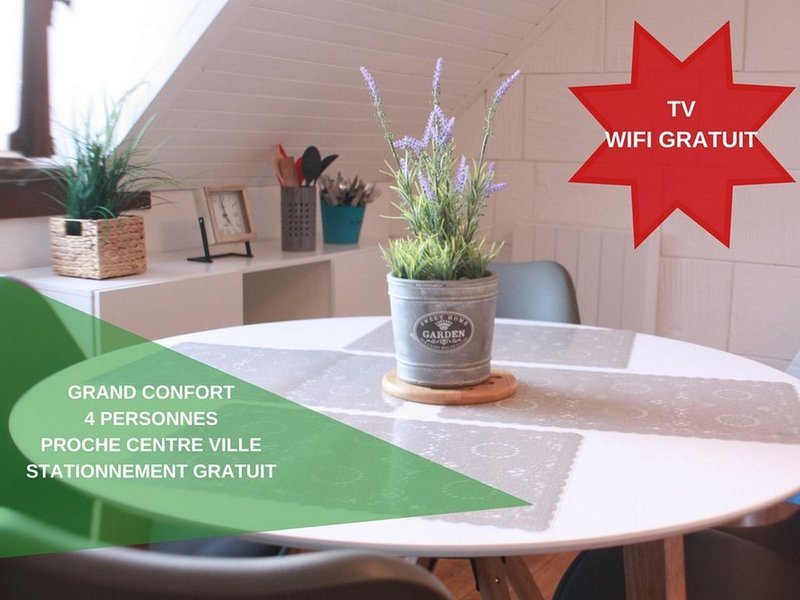 Welcome to Calais - Standing - appartement tout confort au calme et au centre, holiday rental in Bleriot-Plage