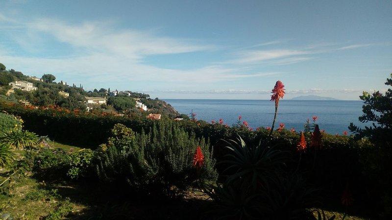 Studio  sur jardin avec vue mer (100m du bord de mer), début du Cap Corse, holiday rental in Erbalunga