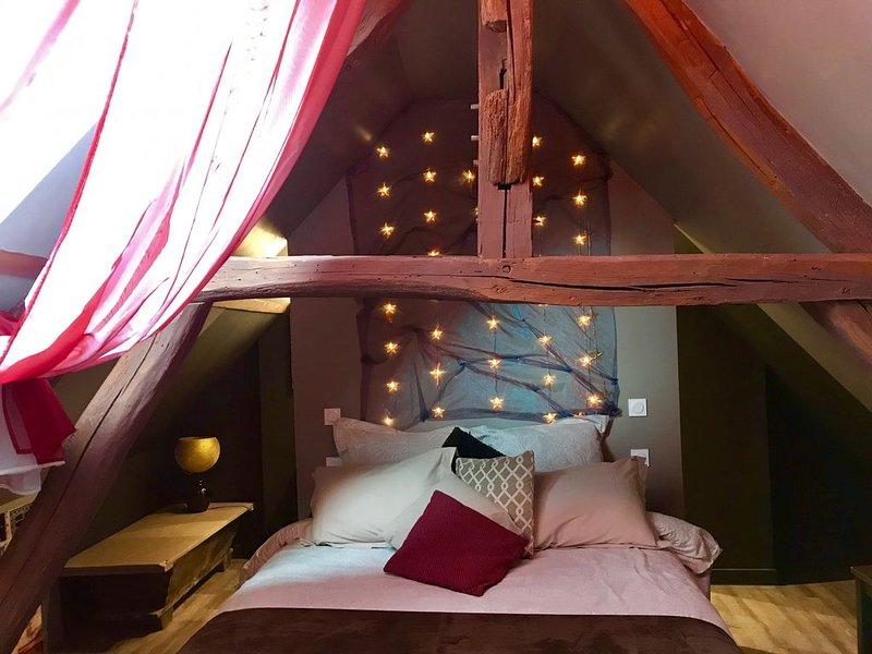 L Élégance  au Coeur du Médiéval, holiday rental in Nangis