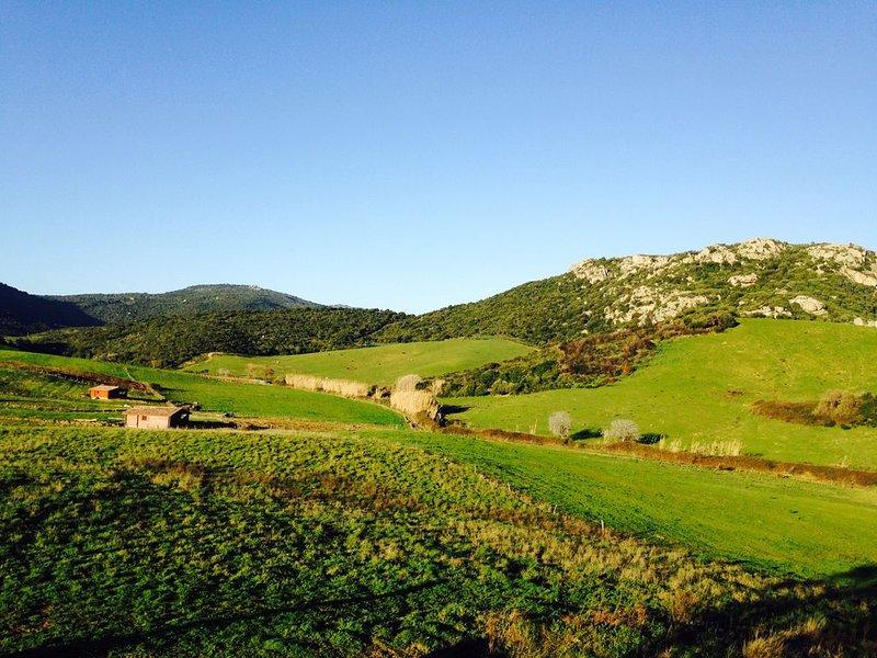 chalet bois tout confort ,spacieux avec vue magnifique !, holiday rental in Tizzano
