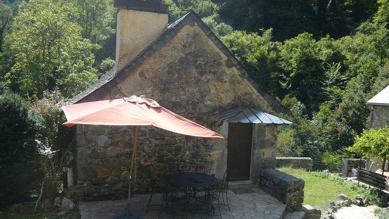 Petit Gîte-Maison sur propriété de 5 ha, piscine, sauna,salle sport,chevaux,ân, holiday rental in Accous