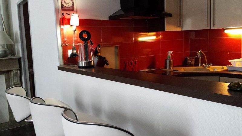 studio atypique au coeur de st girons, tout confort, réservation 2 nuits minimum, holiday rental in Moulis