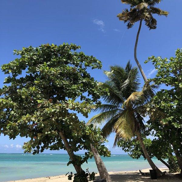 Aquatika 4401 Beach Retreat, vacation rental in Canovanas