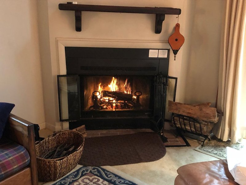 *Having cabin fever at home?* Come stay at our cabin!, vacation rental in Montebello