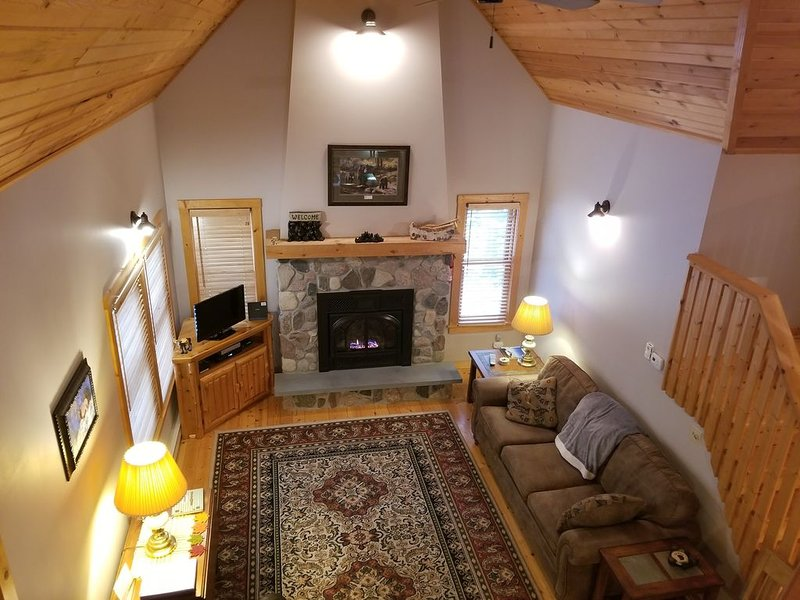 Woodland Chalet - Updated Cabin in the heart of Bayfield's Wilderness at Brickya, vacation rental in Bayfield